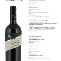 Gavio Cabernet-Sauvignon 2015 Featured Image