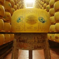 PARMIGIANO REGGIANO ORGANIC ANTIBIOTIC FREE BIOBOTTICELLO 36 months Featured Image