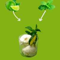 SORBETTO GOURMET AL MOJITO Featured Image