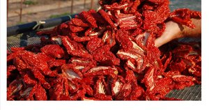 SUN DRIED TOMATOES Featured Image